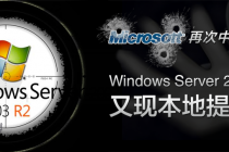 Microsoft Windows Server 2003 SP2 本地提权(CVE-2014-4076)