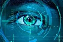 自动化web安全测试