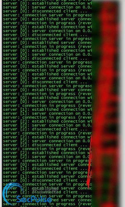 cacti_hacking_5