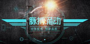"""SecPulse""""脉搏涌动""""第二届安全技术交流沙龙"""