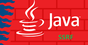 Use DNS Rebinding to Bypass SSRF in Java