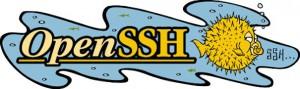 Linux安全运维丨OpenSSH安全浅析